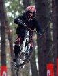 Punkbike V.I.P. DH - report