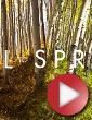 Video: Colorado Fall to Spring