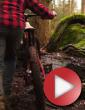 Video: ShapeRideShoot Demo Reel 2012