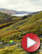 Video: From Fell To Forest
