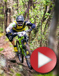 Video: 12 Months 12 Stories - ep. 5