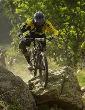 Report: Enduro World Series Les 2 Alpes