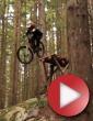 Video: Dylan Sheffer - Freeride Lives