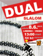 Pozvánka: Dual Slalom v Liberci