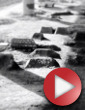 Video: MRSN zve pod most