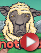 NotBad: online premiéra 29.7.2013