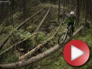 Video: Josef Dressler - One Day
