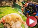 Video: Through my eyes #1 - Vallnord territory