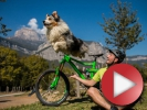 Video: Ed a Aurel - Buď já nebo pes