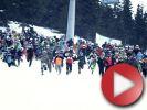 Video: Chinese downhill - oficiální video