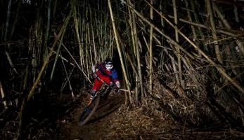 Video: V hlubokých lesích Tchajwanu