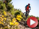 Video + galerie: Jerom� Clementz - one day, every day
