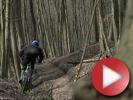 Video: Trail Ride ve Skalických horách