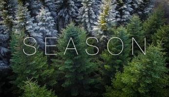 Video: Season - tak vypadá bajková sezóna ve Vogézách
