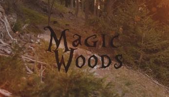 Video: Philip Walder jezdí v Magic Woods
