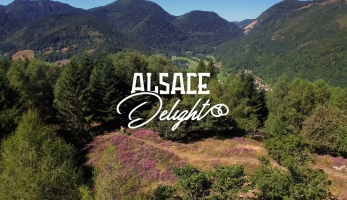 Video: Alsace Delight - Jerome Clementz u sebe doma