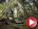 První díl projektu Dresslerova Škola kola je online