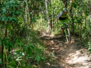 Video: Matěj Charvát - Džungle a bike