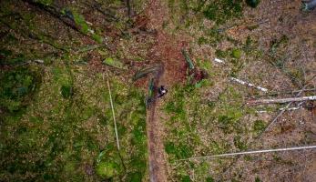 Video: Dušan - rocky woods