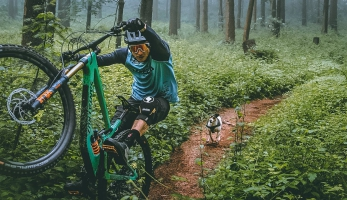 Video: Doggystyle - Jasper Jauch s traildogem