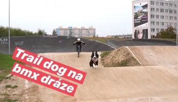 Video: Tomáš Zejda s trail dogem na BMX dráze