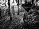 Trutnov Trails otevírají právě dnes