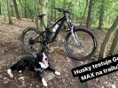 Video: Zejdův Husky běhá s GoPro Max