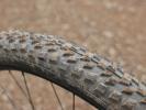 Test: Wild Force - test trailových pláštů od Michelinu - Force AM2 a Wild AM2